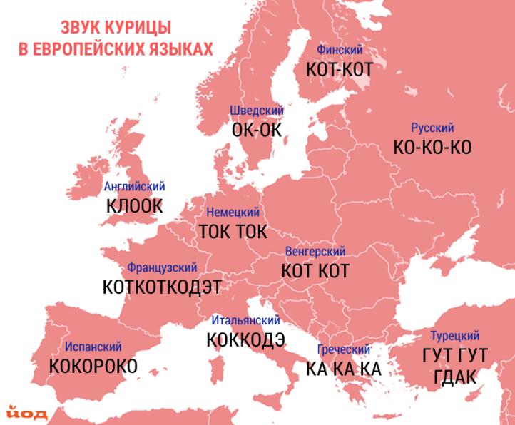 Karta_zvukov_zhivotnyh_kuritsa-1.png