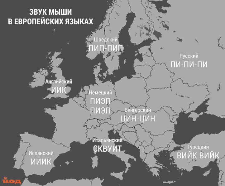 Karta_zvukov_zhivotnyh_mysh.png
