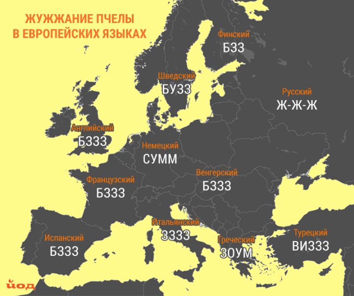 Karta_zvukov_zhivotnyh_pchela.png