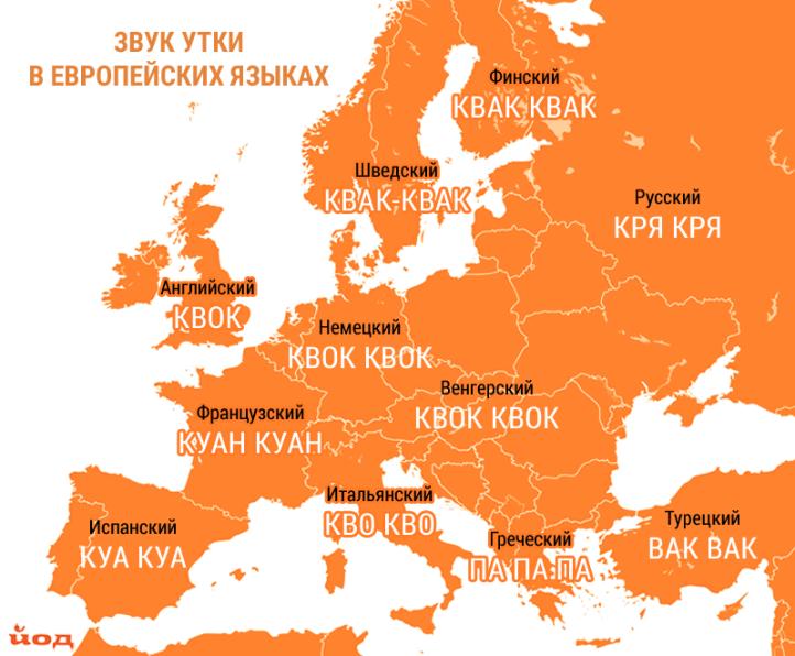 Karta_zvukov_zhivotnyh_utka.png